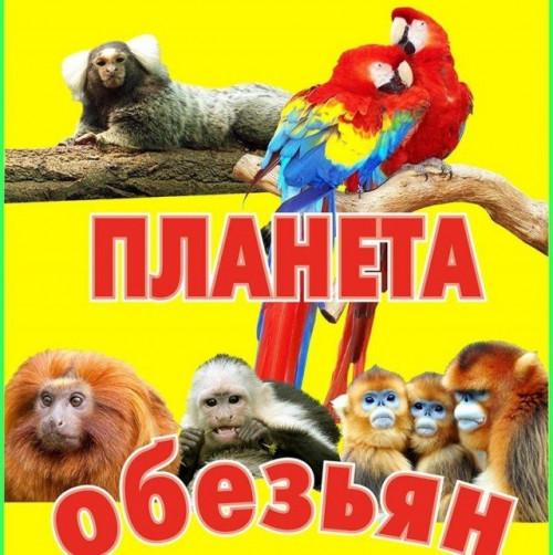 "Выставка ""Планета обезьян"""